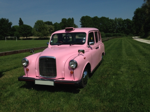 Taxi rose pink lady